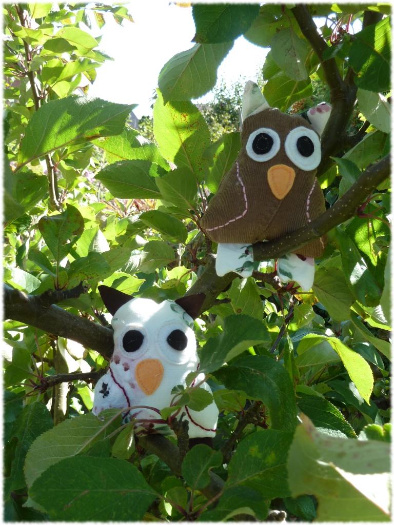 Eulen im Baum