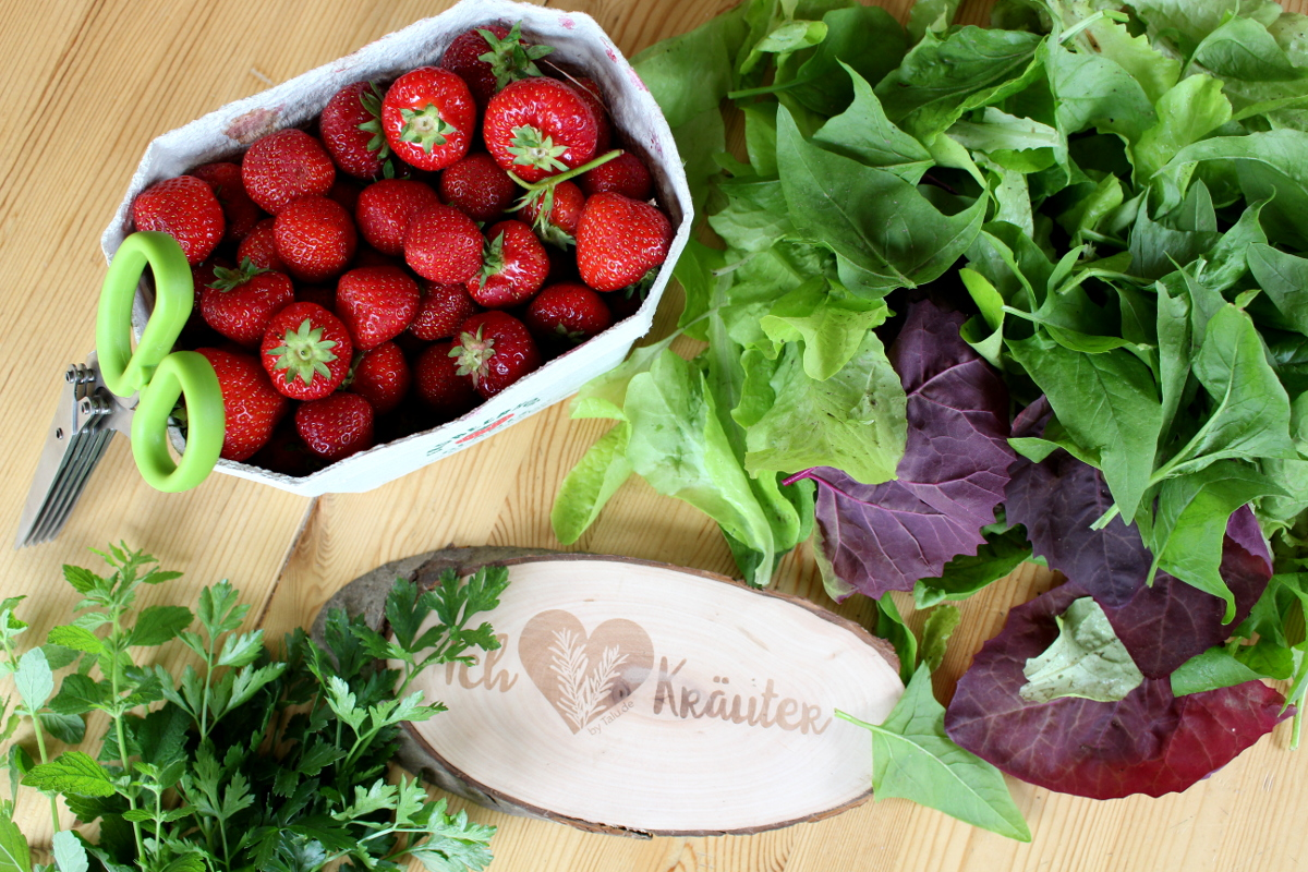 Erdbeer-Melisse-Babyspinat-Salat05