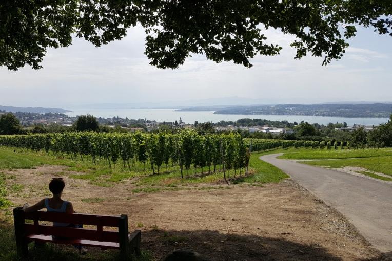 Bodensee_Blick_auf_Weinebene