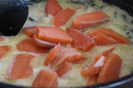 Lachs-Spinat-Ricotta-mitKirschtomaten-Pasta05