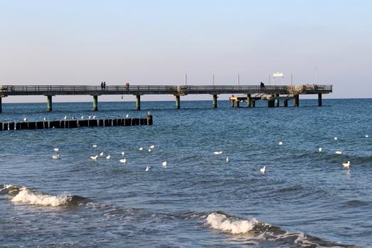 Ostsee-Heiligendamm-Winter08