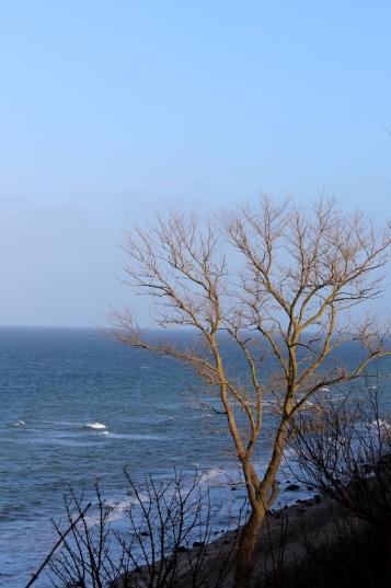 Ostsee-Rerik-Meer-Urlaub25