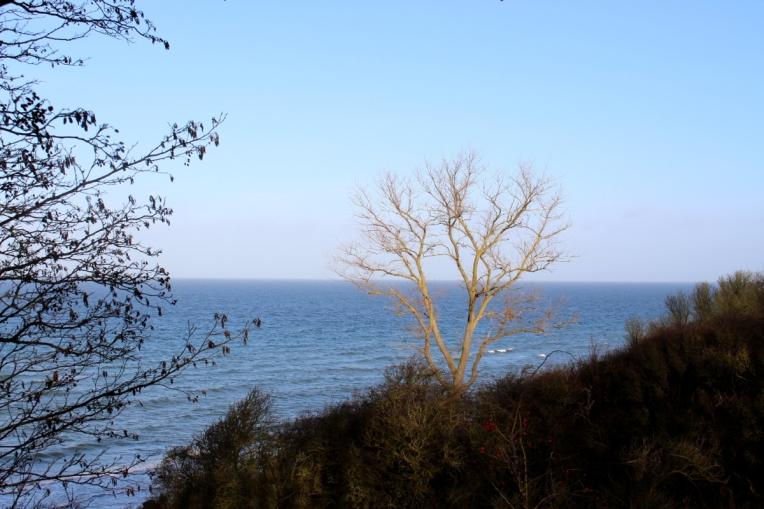 Ostsee-Rerik-Meer-Urlaub26