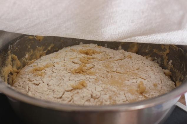 Hefe-Butter-Zuckerkuchen11
