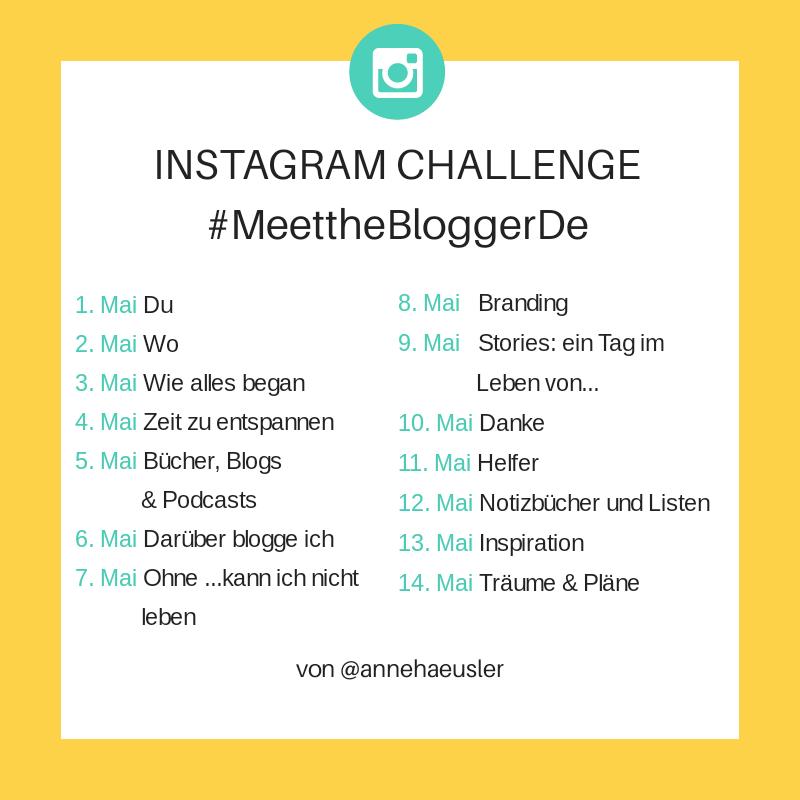 meettheblogger-instagram-1