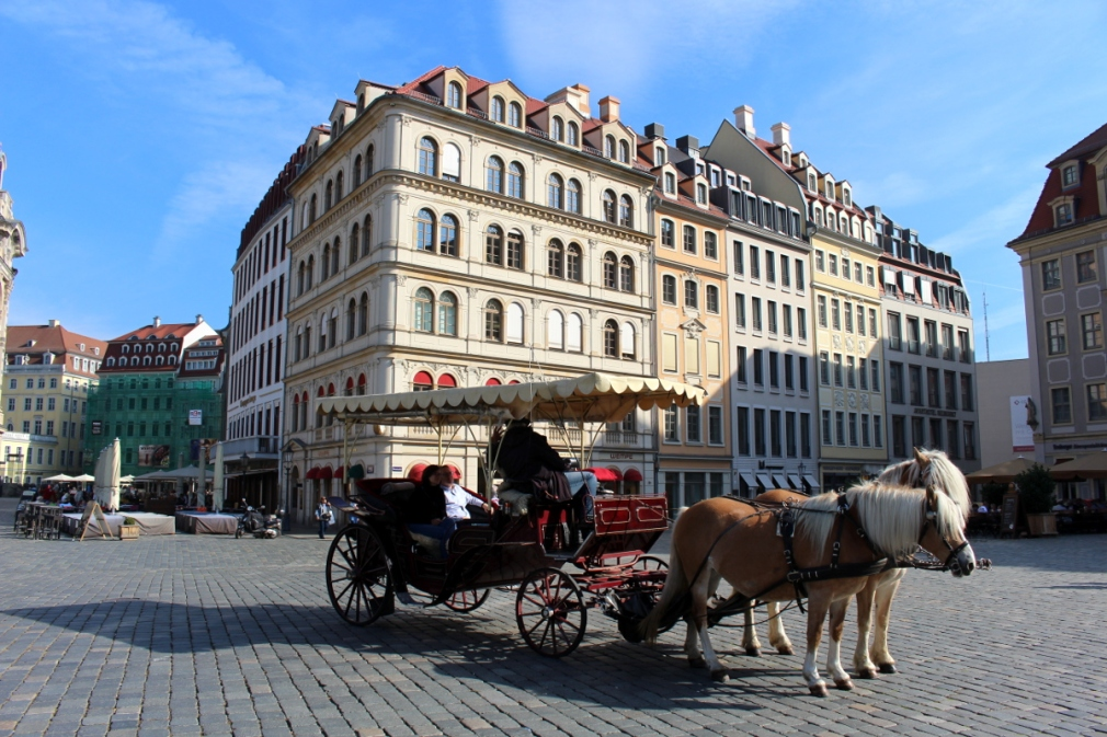 Dresden29