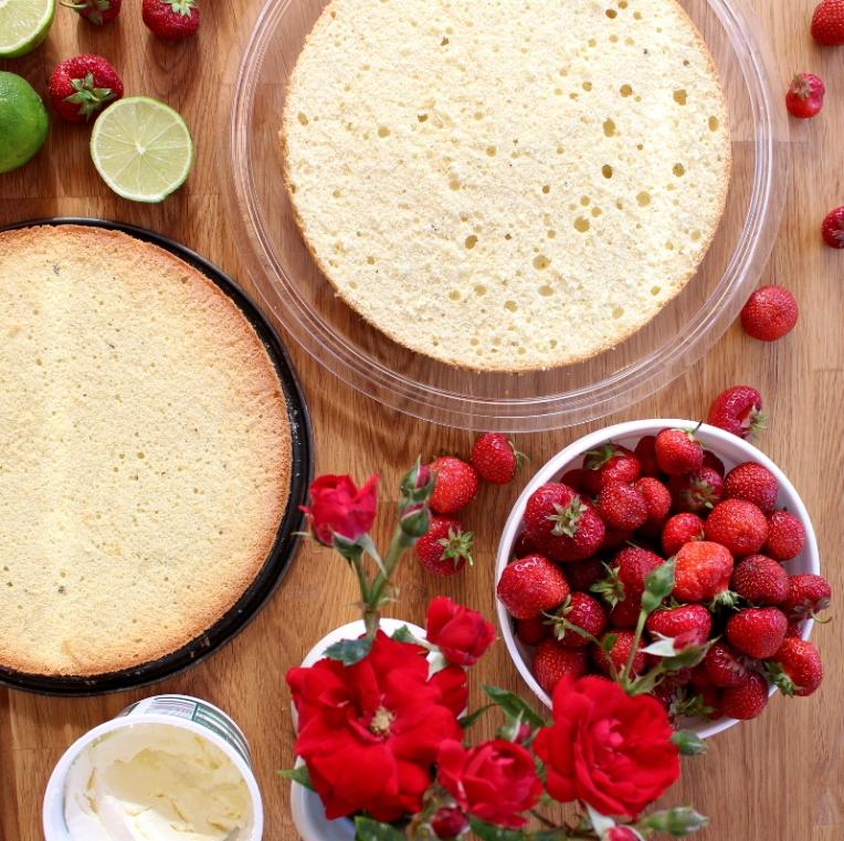 Erdbeer-Mascarpone-Quark-Torte01
