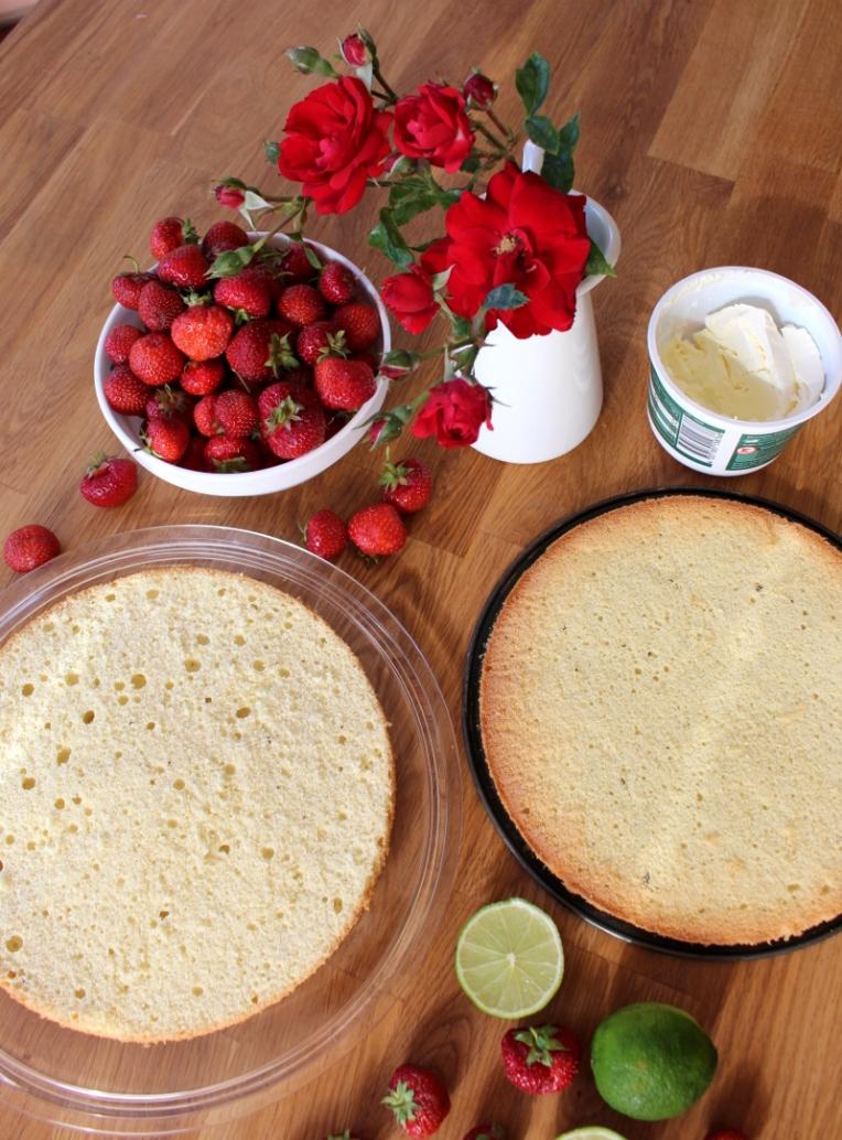 Erdbeer-Mascarpone-Quark-Torte02