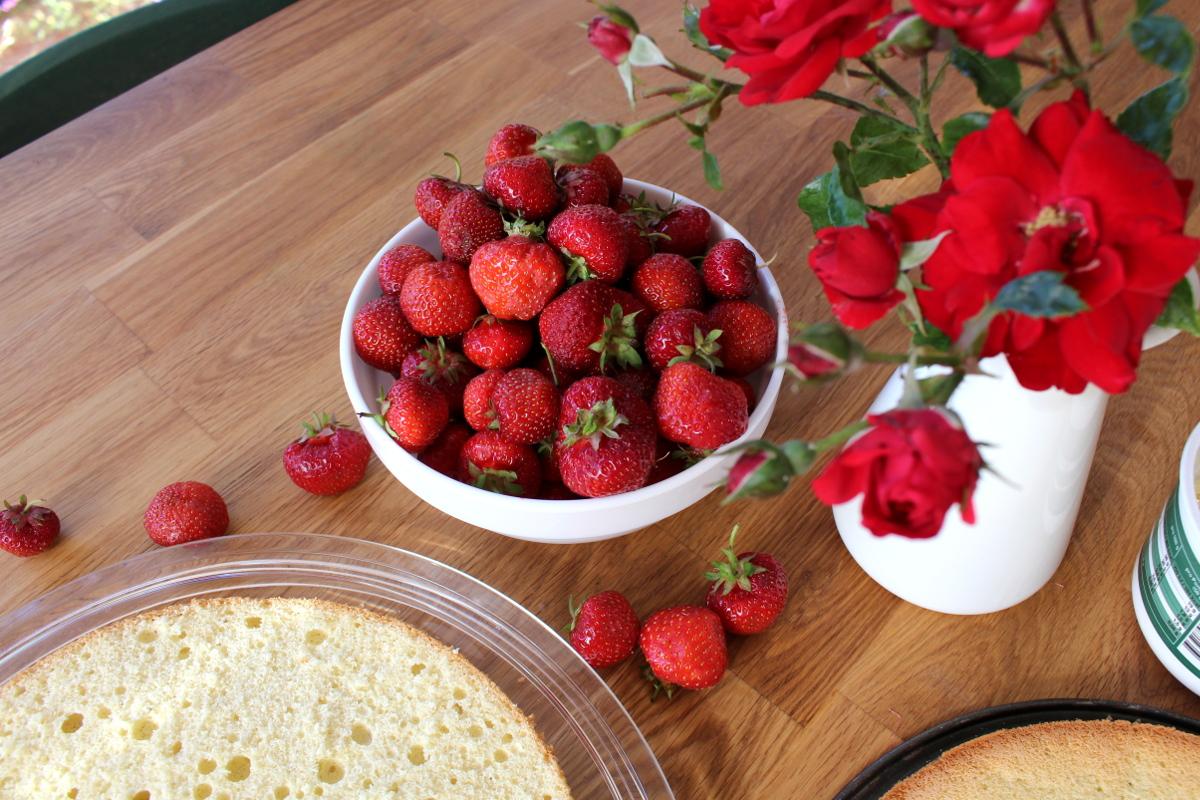 Erdbeer-Mascarpone-Quark-Torte03