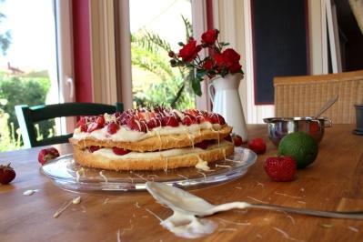 Erdbeer-Mascarpone-Quark-Torte09