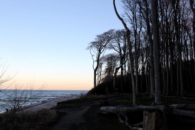 Gespensterwald-Ostsee05